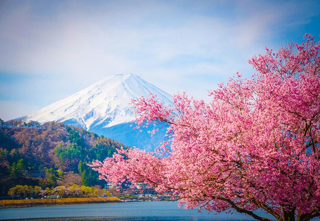 Картинки японцы