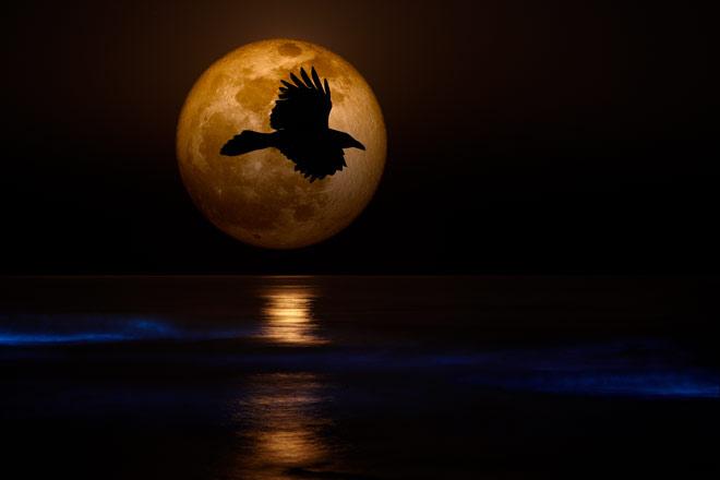 Самая большая и яркая луна The biggest and brightest