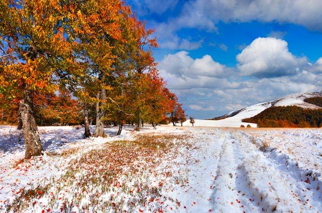 Картинки осень начало зимы