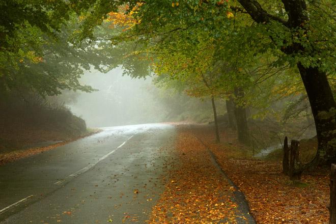 Погода 3 октября