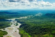 Ученые подсчитали возраст Амазонки