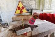 Чернобыль превратился в уникальную радиоэкологическую лабораторию