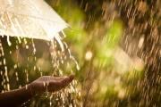 Атмосферный фронт принес сильные грозовые дожди в Черноземье и на юг Европейской России