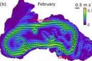 Ученые узнали, как глобальное потепление повлияло на Черное море — и это хорошая новость