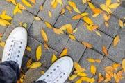 Погода в Москве: наступает «коммунальная осень»