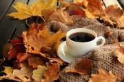 На улице осень: 10 фактов о золотой поре