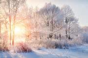 В России зафиксированы первые в этом сезоне 30-градусные морозы