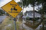 Число жертв урагана «Майкл» в США возросло до 27 человек