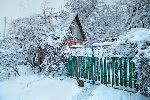 Погода в Черноземье: в конце недели морозы пойдут на спад