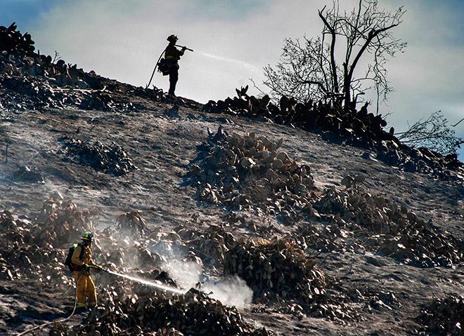 Пожарные тушат калифорнийский пожар