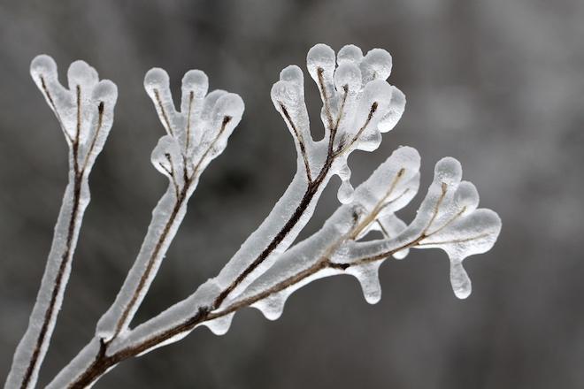 Казгидромет погода в алматы на 30 дней казгидромет
